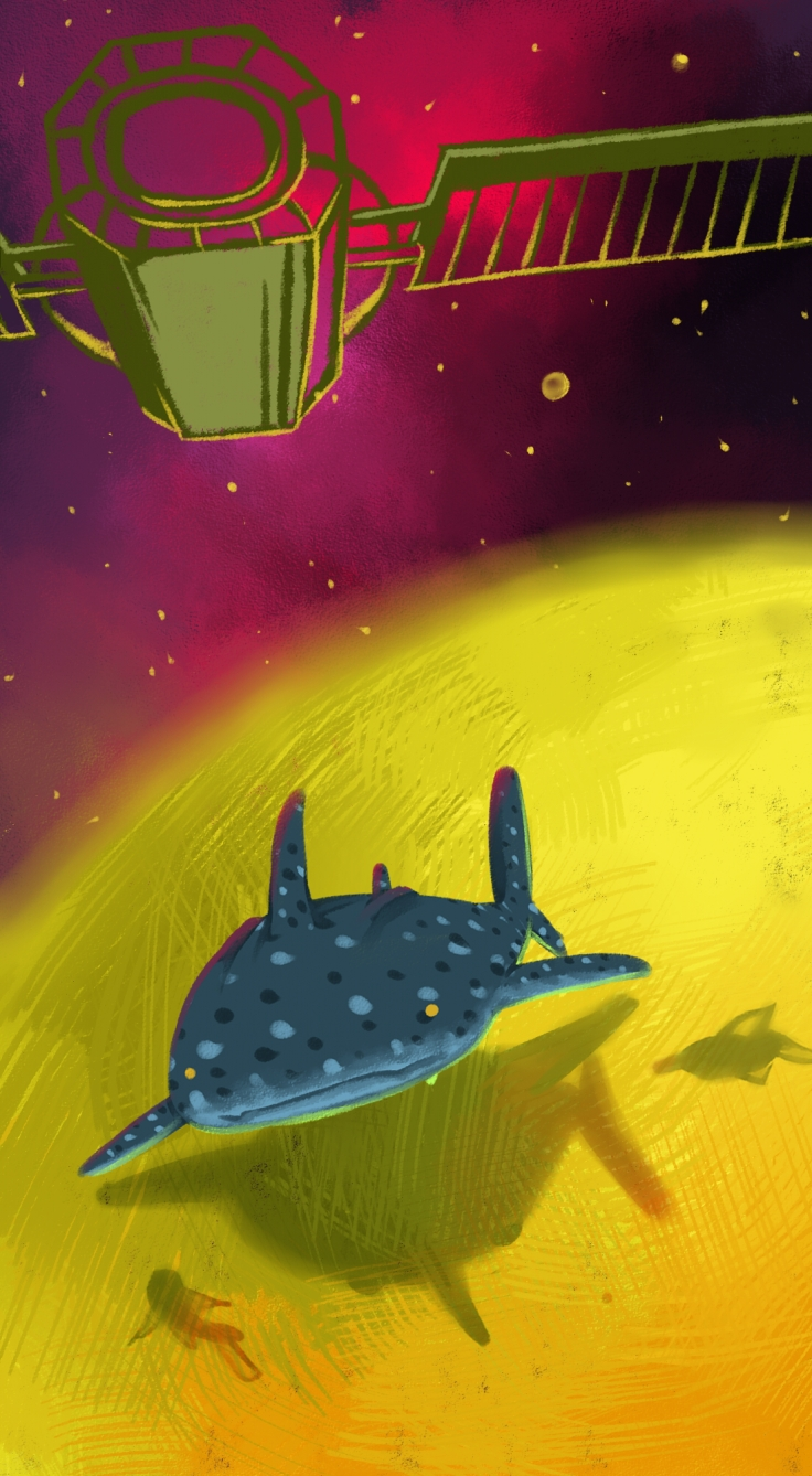 [web] Chen-Whale Shark Adventure